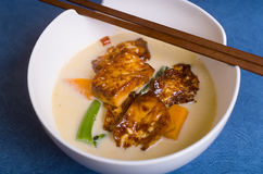 Chili and Ginger Tofu soup Stock Image