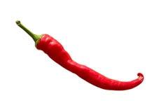 chili gorącego pieprzu czerwień Obraz Royalty Free