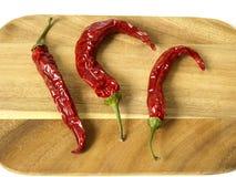 chili gorący Zdjęcie Stock