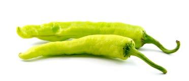 Chili grönsaken, grönsakzucchinin, minnestavlor färgade arkivfoto