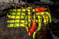 Chili grilled Royalty Free Stock Images