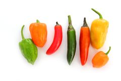 Chili Habanero Serrano hot mexican peppers Royalty Free Stock Image