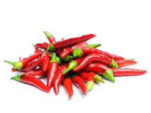 Chili heap Stock Images