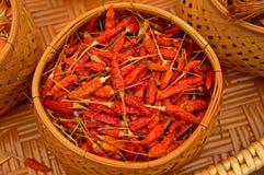 Chili Herbs tailandês foto de stock royalty free