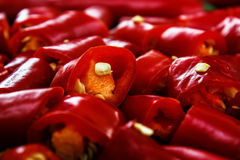 chili huggen av pepparred Royaltyfri Fotografi