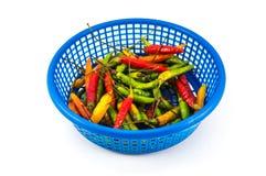 Chili i blå korg Arkivfoto