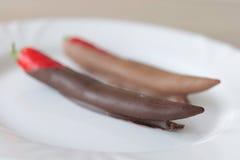Chili i brun choklad på den vita plattan Royaltyfria Bilder