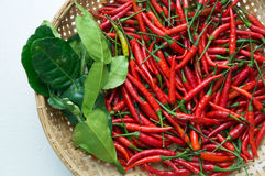 Chili ingredients preparation hot spicy oriental fresh concept Stock Photo