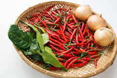Chili ingredients preparation hot spicy oriental fresh concept Stock Photography
