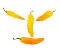 chili isolerad orange pepparleendewhite Fotografering för Bildbyråer