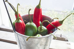 Chili and jalapeno, in a aluminium bowl. On wooden ground Stock Photography