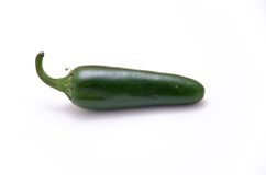 Chilli jalapeno. Chili jalapeno foreground on white background Stock Image