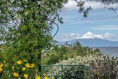 Chili linia brzegowa i zadziwiający wulkan fotografia royalty free