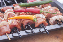 Chili on meat skewers Royalty Free Stock Photography