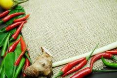 Chili med det ljust rödbrun kaffirlimefruktbladet med den thai löken på säckvävbakgrund Arkivbild