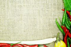 Chili med det ljust rödbrun kaffirlimefruktbladet med den thai löken på säckvävbakgrund Arkivbilder