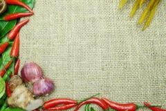 Chili med det ljust rödbrun kaffirlimefruktbladet med den thai löken på säckvävbakgrund Royaltyfri Bild