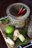 Chili in mortar with tomyum ingredients Stock Image