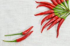 Chili na tkaninie Fotografia Stock