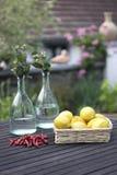 Chili och citroner på en trädgårds- tabell Royaltyfria Bilder