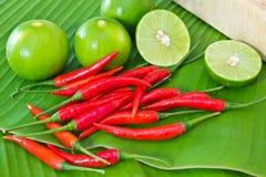 Chili och limefrukt arkivfoton