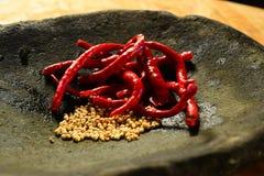 Chili och peppar Fotografering för Bildbyråer