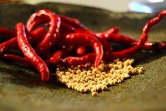 Chili och peppar Royaltyfri Foto