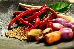 Chili och peppar Arkivfoto