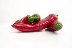 Chili och peppar Arkivbild