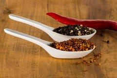 Chili och peppar i skal Arkivfoton