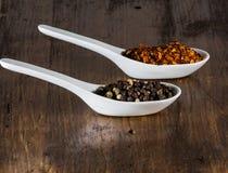 Chili och peppar i skal Arkivbilder