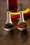 Chili och peppar i skal Royaltyfria Foton