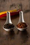 Chili och peppar i skal Royaltyfri Fotografi