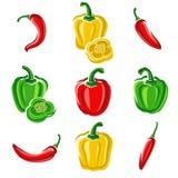 Chili- och pepparuppsättning vektor royaltyfri illustrationer