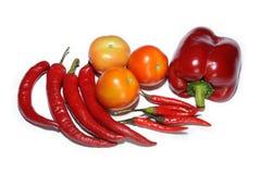 Chili och tomater som isoleras på vit Arkivbilder