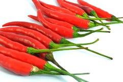 chili odizolowywająca pieprzowa czerwień Fotografia Royalty Free