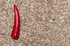 Chili på ett sågspån Royaltyfri Bild