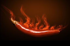 Chili paper in fire. Hote Chili paper with fire and flames Royalty Free Stock Photos