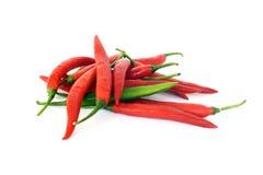 Chili Papper d'un rouge ardent image libre de droits