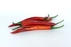 Chili Papper encarnado Fotografia de Stock
