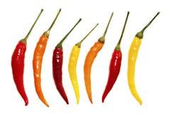 Free Chili Paprika Isolated On White Background Stock Photography - 106416382