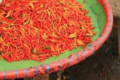 Chili papryki w koszu Obraz Stock