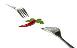 Chili parsley and fork. Eating chili is good for healthy people. Chili is a main ingredient of the Asians food,especially thai Cuisine. Chilli is spicy but stock photo