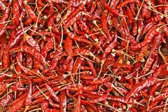 Chili For Pattern vermelho seco foto de stock royalty free