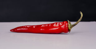 Chili peper. Chili pepper on the table stock photography