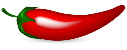 Extremely Hot Red Chili Pepper On Fire Royalty Free Stock Images ...