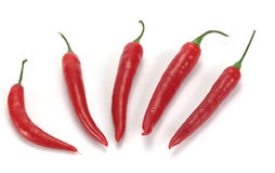Chili pepper. Closeup of red chili peppers on white background Stock Photography