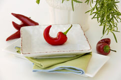 Chili Pepper. Red Chili Pepper on White Plate Stock Images