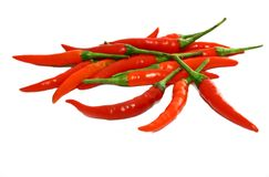 Chili Pepper. Isolated photo of chili pepper royalty free stock photography