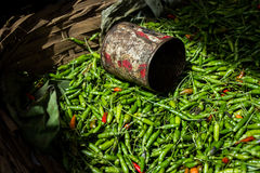 Chili pepper. Green chili pepper on the market in Bagan city, Myanmar Stock Images